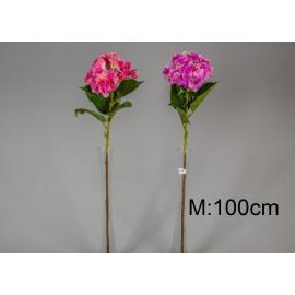 Művirág hortenzia