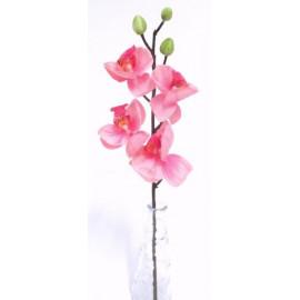 Orchidea szál művirág