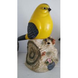Csipogó, világító madár