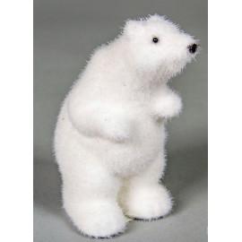 Jegesmedve álló