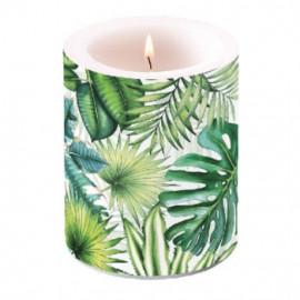 Gyertya átvilágítós Tropical